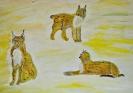 .Рисуем животных и птиц